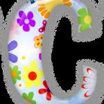Комнатные растения на букву С